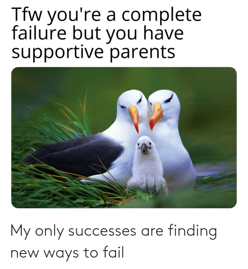 Failure: Tfw you're a complete  failure but you have  supportive parents My only successes are finding new ways to fail