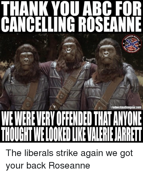 Abc, Memes, and Thank You: THANK YOU ABC FOR  CANCELLING ROSEANNE  NECK A  rednecknationgear.com  WE WEREVERY OFFENDED THAT ANYONE  THOUGHT WELOOKED LIKE VALERIE JARRET The liberals strike again we got your back Roseanne