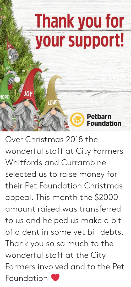 Christmas City Vet.Thank You For Your Support You Hope Joy Hope Love Petbarn