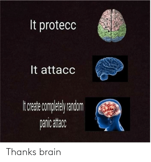 Brain: Thanks brain