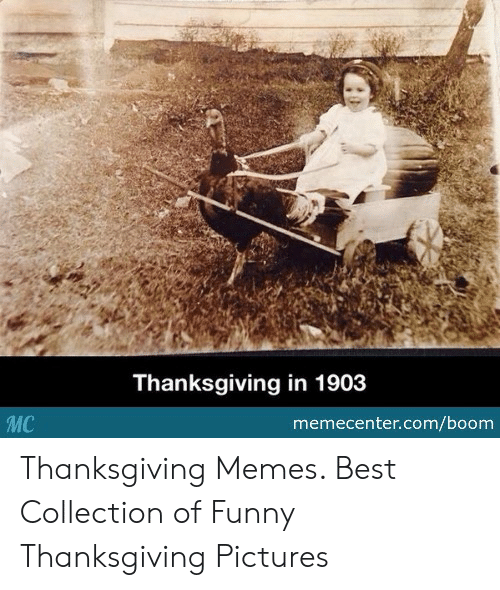 Funny, Memes, and Thanksgiving: Thanksgiving in 1903  MC  memecenter.com/boom Thanksgiving Memes. Best Collection of Funny Thanksgiving Pictures