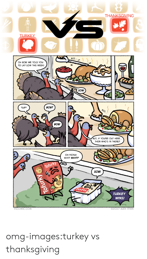 Omg, Thanksgiving, and Tumblr: THANKSGIVING  TURKEY  8ZZ  OH BOB! WE TOLD You  TO LAY LOW THIS WEEK!  SOB!  SUP?  BOB?  BOB!  BUT, IF YOU'RE OUT HERE..  THEN WHO'S IN THERE?  OH FIONA!  WHY? WHY??  SOB!  TURKEY  WINS!  SCOMIC.COM  92017 ALEX RYAN omg-images:turkey vs thanksgiving