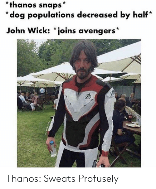 John Wick, Avengers, and Thanos: *thanos snaps*  * dog populations decreased by half*  John Wick: *joins avengers* Thanos: Sweats Profusely