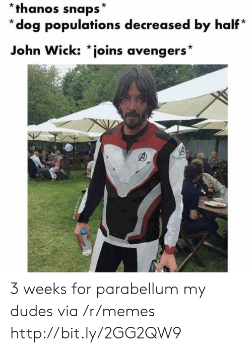 My Dudes: *thanos snaps*  *dog populations decreased by half*  John Wick: *joins avengers* 3 weeks for parabellum my dudes via /r/memes http://bit.ly/2GG2QW9