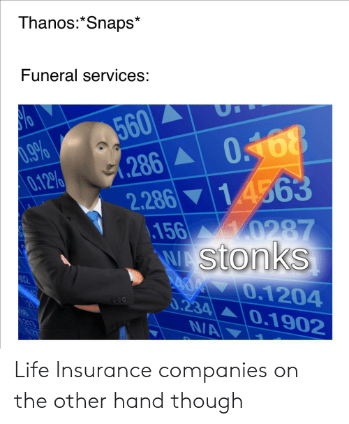 Life, Reddit, and Life Insurance: Thanos:*Snaps*  Funeral services:  560  0.9%  0.12%  286A  (286  2.286 14563  156 0287  WAStonks  70.1204  0.234 0.1902  ΝΑ  02  660  S.213  NA  0.27 Life Insurance companies on the other hand though