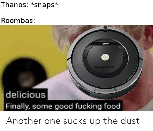 Another One, Food, and Fucking: Thanos: *snaps*  Roombas:  Robot  |delicious  Finally, some good fucking food Another one sucks up the dust