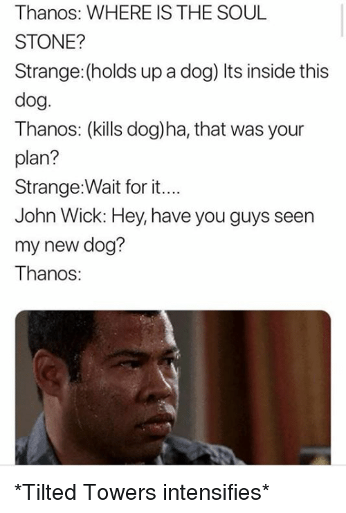 John Wick, Dank Memes, and Thanos: Thanos: WHERE IS THE SOUL  STONE?  Strange: (holds up a dog) Its inside this  dog.  Thanos: (kills dog)ha, that was your  plan?  Strange:Wait for it...  John Wick: Hey, have you guys seen  my new dog?  Thanos *Tilted Towers intensifies*