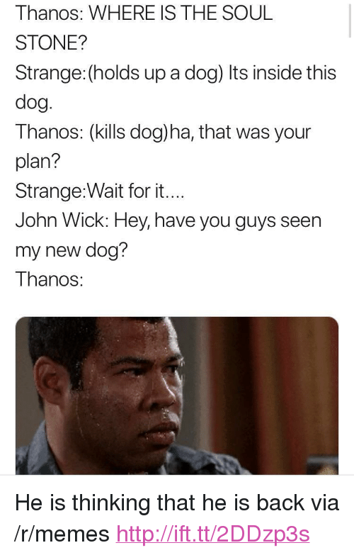 "John Wick, Memes, and Http: Thanos: WHERE IS THE SOUL  STONE?  Strange: (holds up a dog) Its inside this  dog  Thanos: (kills dog)ha, that was your  plan?  Strange:Wait for it...  John Wick: Hey, have you guys seen  my new dog?  Thanos: <p>He is thinking that he is back via /r/memes <a href=""http://ift.tt/2DDzp3s"">http://ift.tt/2DDzp3s</a></p>"