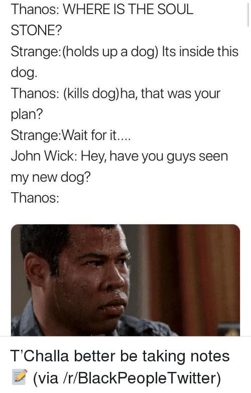Blackpeopletwitter, John Wick, and Thanos: Thanos: WHERE IS THE SOUL  STONE?  Strange: (holds up a dog) Its inside this  dog  Thanos: (kills dog)ha, that was your  plan?  Strange:Wait for it...  John Wick: Hey, have you guys seen  my new dog?  Thanos: <p>T'Challa better be taking notes 📝 (via /r/BlackPeopleTwitter)</p>