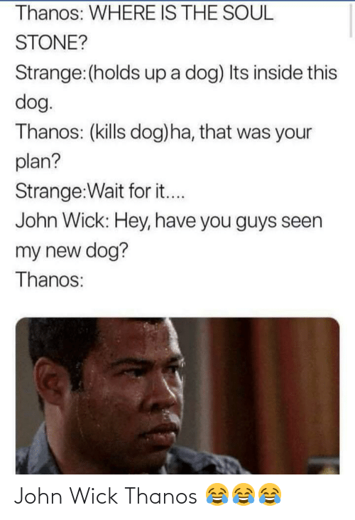Thanos: Thanos: WHERE IS THE SOUL  STONE?  Strange:(holds up a dog) Its inside this  dog.  Thanos: (kills dog)ha, that was your  plan?  Strange:Wait for it...  John Wick: Hey, have you guys seen  my new dog?  Thanos: John Wick Thanos 😂😂😂