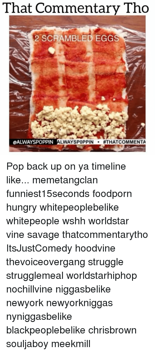 Hoodvine: That Commentary Tho  Tho  2 SCRAMBLED EGGS  OALWAYSPOPPIN  LWAYSPOPPIN  ATHATCOMMENTA Pop back up on ya timeline like... memetangclan funniest15seconds foodporn hungry whitepeoplebelike whitepeople wshh worldstar vine savage thatcommentarytho ItsJustComedy hoodvine thevoiceovergang struggle strugglemeal worldstarhiphop nochillvine niggasbelike newyork newyorkniggas nyniggasbelike blackpeoplebelike chrisbrown souljaboy meekmill