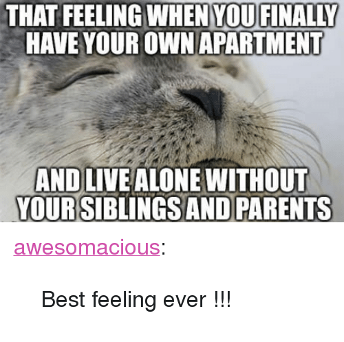 """Being Alone, Parents, and Tumblr: THAT FEELING WHEN YOUFINALLY  HAVE YOUR OWN APARTMENT  AND LIVE ALONE WITHOUT  YOURSIBLINGS AND PARENTS <p><a href=""""http://awesomacious.tumblr.com/post/170629000213/best-feeling-ever"""" class=""""tumblr_blog"""">awesomacious</a>:</p>  <blockquote><p>Best feeling ever !!!</p></blockquote>"""