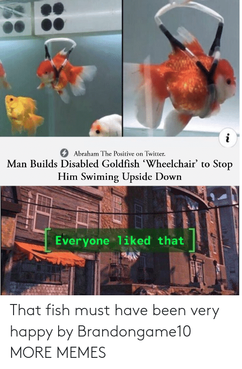 very happy: That fish must have been very happy by Brandongame10 MORE MEMES