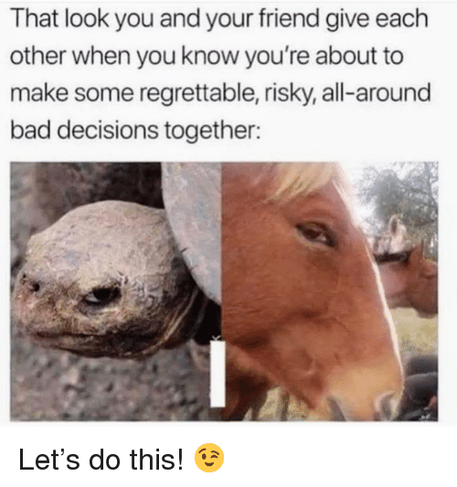 Bad, Regrettable, and Decisions: That look you and your friend give each  other when you know you're about to  make some regrettable, risky, all-around  bad decisions together: <p>Let's do this! 😉</p>