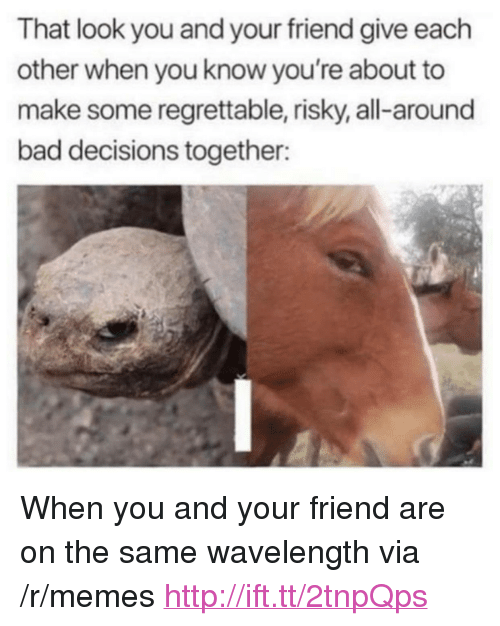"""Bad, Memes, and Http: That look you and your friend give each  other when you know you're about to  make some regrettable, risky, all-around  bad decisions together: <p>When you and your friend are on the same wavelength via /r/memes <a href=""""http://ift.tt/2tnpQps"""">http://ift.tt/2tnpQps</a></p>"""