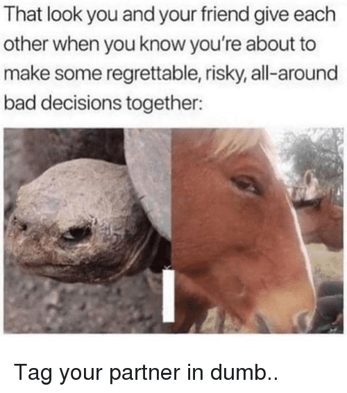 Bad, Dumb, and Memes: That look you and your friend give each  other when you know you're about to  make some regrettable, risky, all-around  bad decisions together: Tag your partner in dumb..