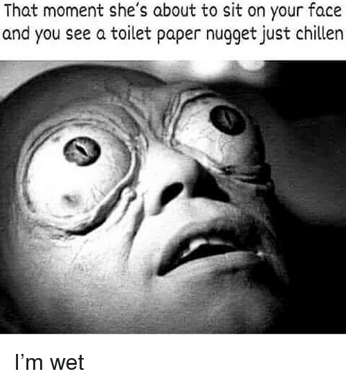 Dank, Paper, and Wet: That moment she's about to sit on your face  and you see a toilet paper nugget just chillen I'm wet