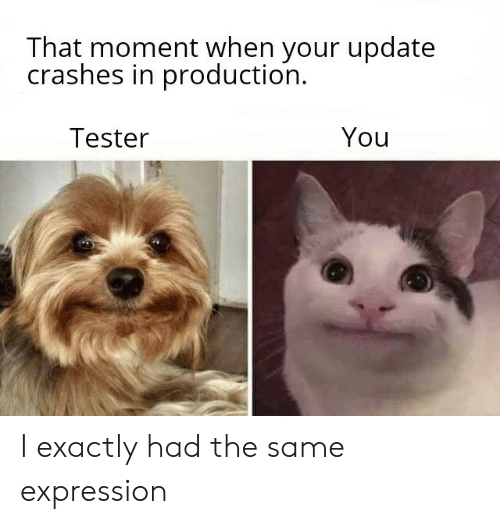 Crashes: That moment when your update  crashes in production  You  Tester I exactly had the same expression