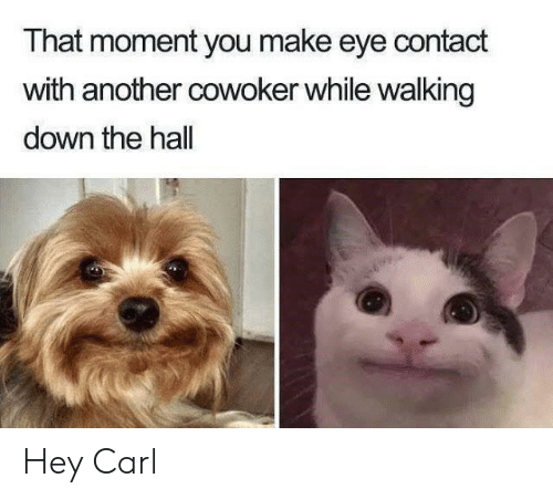 Another, Eye, and Down: That moment you make eye contact  with another cowoker while walking  down the hall Hey Carl