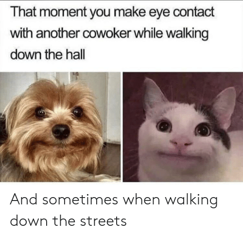Streets, Another, and Eye: That moment you make eye contact  with another cowoker while walking  down the hall And sometimes when walking down the streets