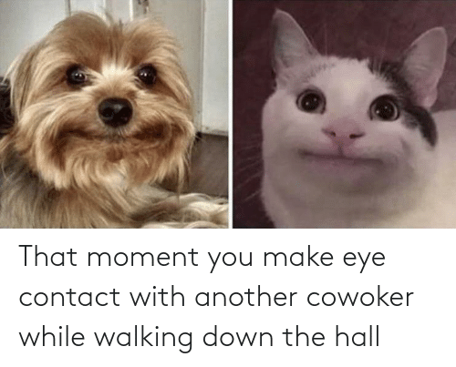 You Make: That moment you make eye contact with another cowoker while walking down the hall