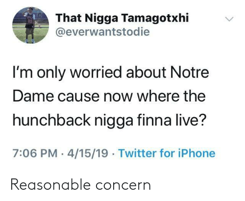 Iphone, Twitter, and Live: That Nigga Tamagotxhi  @everwantstodie  I'm only worried about Notre  Dame cause now where the  hunchback nigga finna live?  7:06 PM 4/15/19 Twitter for iPhone Reasonable concern