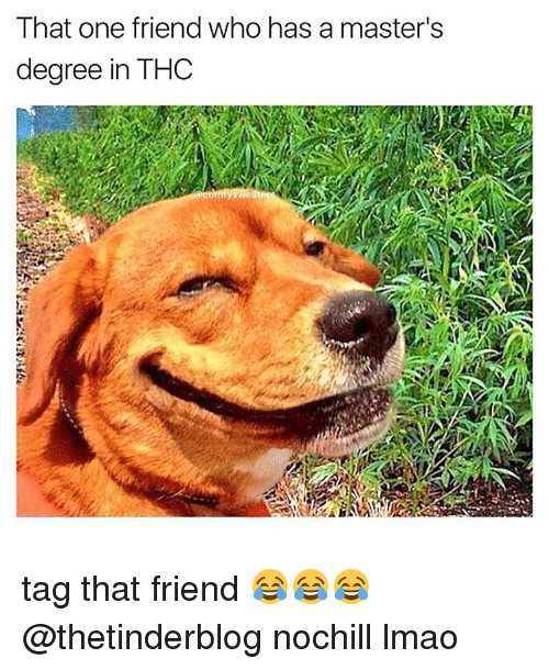 Memes, Masters, and 🤖: That one friend who has a master's  degree in THC tag that friend 😂😂😂 @thetinderblog nochill lmao