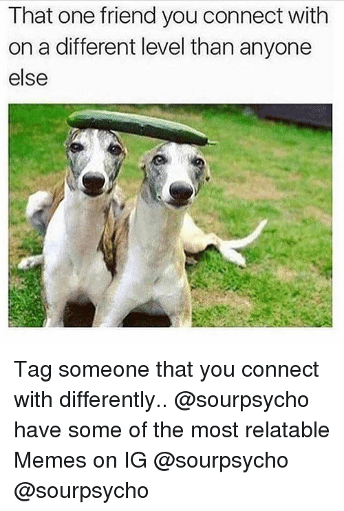 Memes, Tag Someone, and Relatable: That one friend you connect with  on a different level than anyone  else Tag someone that you connect with differently.. @sourpsycho have some of the most relatable Memes on IG @sourpsycho @sourpsycho