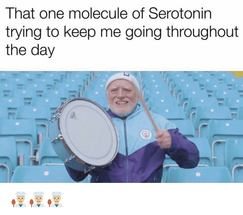 Funny, Serotonin, and One: That one molecule of Serotonin  trying to keep me going throughout  the day 👨🏼‍🍳👨🏼‍🍳👨🏼‍🍳