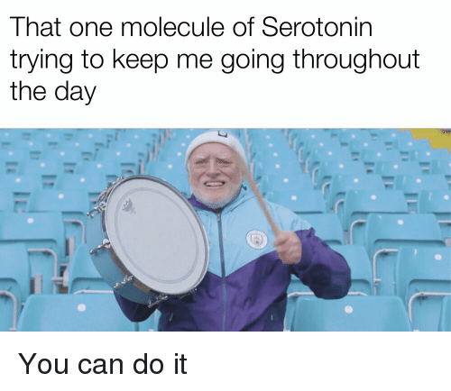 Can, Serotonin, and One: That one molecule of Serotonin  trying to keep me going throughout  the day You can do it