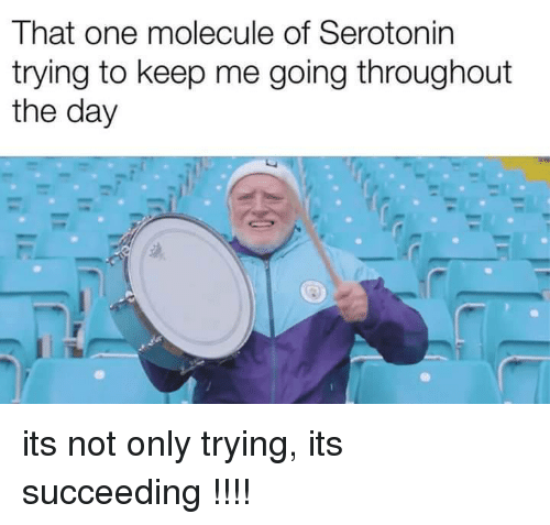 Serotonin, One, and Day: That one molecule of Serotonin  trying to keep me going throughout  the day its not only trying, its succeeding !!!!