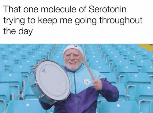 Memes, 🤖, and Serotonin: That one molecule of Serotonin  trying to keep me going throughout  the day