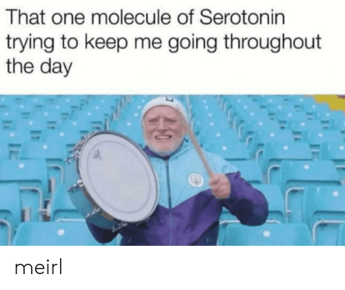 MeIRL, Serotonin, and One: That one molecule of Serotonin  trying to keep me going throughout  the day  20 meirl
