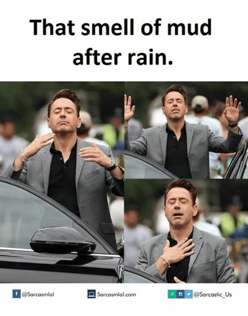 That Smell Of Mud After Rain Us F Sarcasmlolcom Mud Meme On