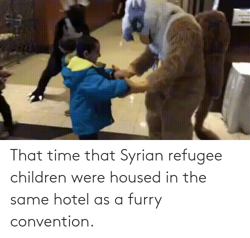 convention: That time that Syrian refugee children were housed in the same hotel as a furry convention.