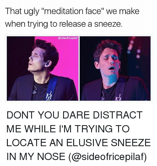 """Memes, Ugly, and Meditation: That ugly """"meditation face"""" we make  when trying to release a sneeze.  @sideofricepilaf DONT YOU DARE DISTRACT ME WHILE I'M TRYING TO LOCATE AN ELUSIVE SNEEZE IN MY NOSE (@sideofricepilaf)"""