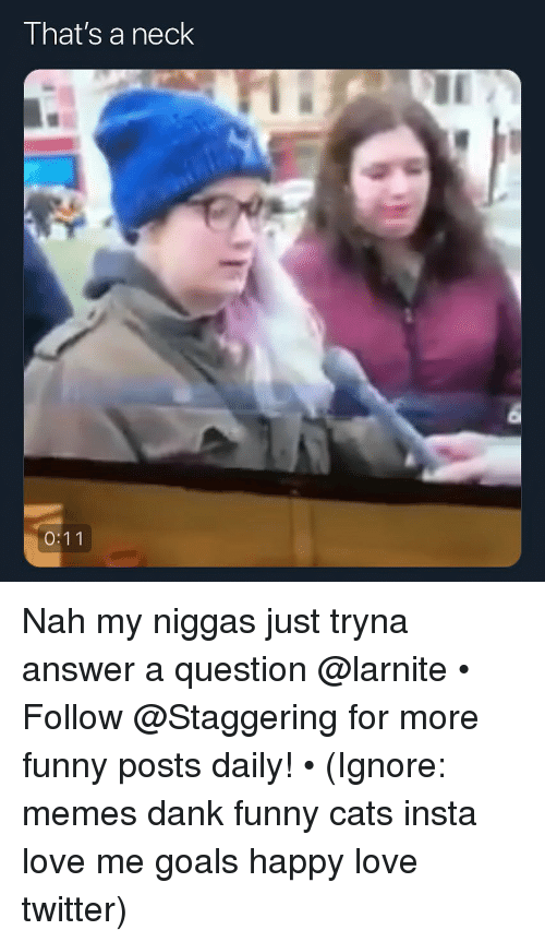 my niggas: That's a neck Nah my niggas just tryna answer a question @larnite • ➫➫➫ Follow @Staggering for more funny posts daily! • (Ignore: memes dank funny cats insta love me goals happy love twitter)