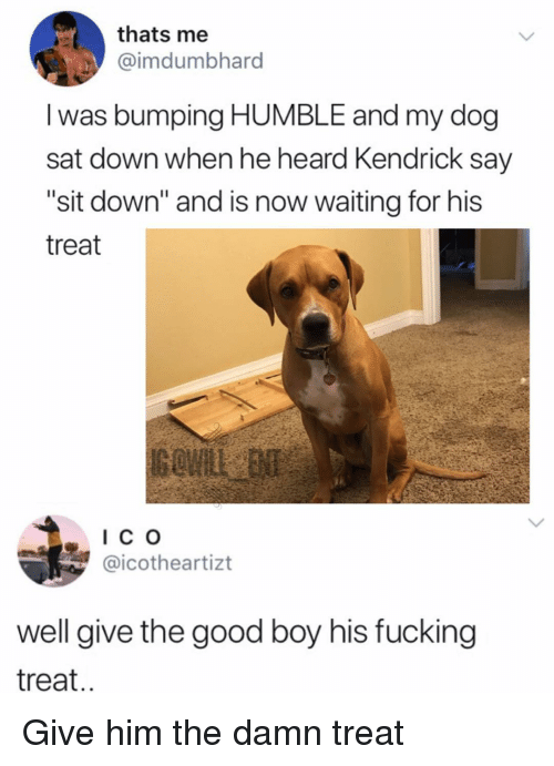 """Fucking, Memes, and Good: thats me  @imdumbhard  I was bumping HUMBLE and my dog  sat down when he heard Kendrick say  """"sit down"""" and is now waiting for his  treat  IC o  @icotheartizt  well give the good boy his fucking  treat.. Give him the damn treat"""