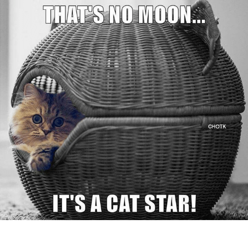 Memes, Moon, and Star: THATS NO MOON  CHOTK  IT'S A CAT STAR!
