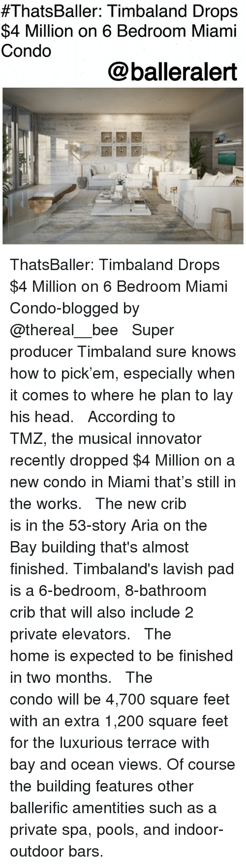 Bailey Jay, Head, and Memes:  #ThatsBaller: Timbaland Drops  $4 Million on 6 Bedroom Miami  Condo  @balleralert ThatsBaller: Timbaland Drops $4 Million on 6 Bedroom Miami Condo-blogged by @thereal__bee ⠀⠀⠀⠀⠀⠀⠀⠀⠀ ⠀⠀ Super producer Timbaland sure knows how to pick'em, especially when it comes to where he plan to lay his head. ⠀⠀⠀⠀⠀⠀⠀⠀⠀ ⠀⠀ According to TMZ, the musical innovator recently dropped $4 Million on a new condo in Miami that's still in the works. ⠀⠀⠀⠀⠀⠀⠀⠀⠀ ⠀⠀ The new crib is in the 53-story Aria on the Bay building that's almost finished. Timbaland's lavish pad is a 6-bedroom, 8-bathroom crib that will also include 2 private elevators. ⠀⠀⠀⠀⠀⠀⠀⠀⠀ ⠀⠀ The home is expected to be finished in two months. ⠀⠀⠀⠀⠀⠀⠀⠀⠀ ⠀⠀ The condo will be 4,700 square feet with an extra 1,200 square feet for the luxurious terrace with bay and ocean views. Of course the building features other ballerific amentities such as a private spa, pools, and indoor-outdoor bars.