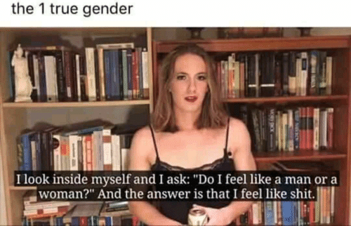 "Shit, True, and Answer: the 1 true gender  Ilook inside myself and I ask: ""Do I feel like a man ora  woman?"" And the answer is that I feel like shit."