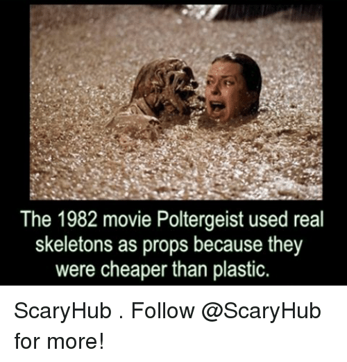 Memes, Movie, and 🤖: The 1982 movie Poltergeist used real  skeletons as props because they  were cheaper than plastic. ScaryHub . Follow @ScaryHub for more!