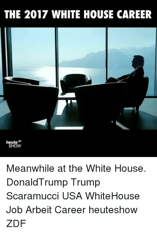 Memes, White House, and House: THE 2017 WHITE HOUSE CAREER  heute  SHOW Meanwhile at the White House. DonaldTrump Trump Scaramucci USA WhiteHouse Job Arbeit Career heuteshow ZDF