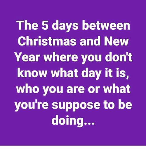 Christmas, New Year's, and Who: The 5 days between  Christmas and New  Year where you dont  know what day it is,  who you are or what  you're suppose to be  doing...