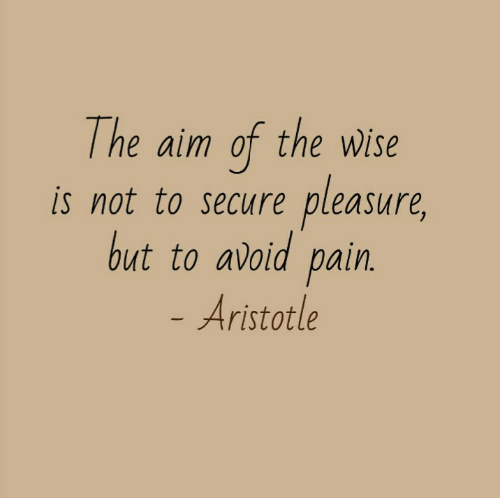 Secure: The aim of the wWise  pleasure,  is not to secure  but to avoid pain.  - Aristotle
