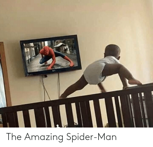 Spider: The Amazing Spider-Man