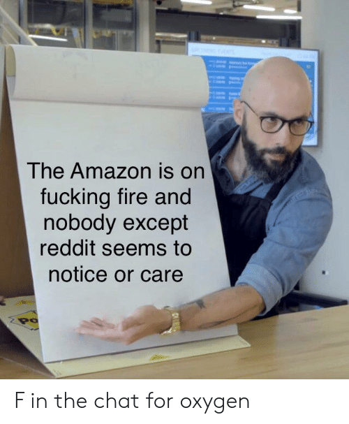 Amazon, Fire, and Fucking: The Amazon is on  fucking fire and  nobody except  reddit seems to  notice or care  Po F in the chat for oxygen