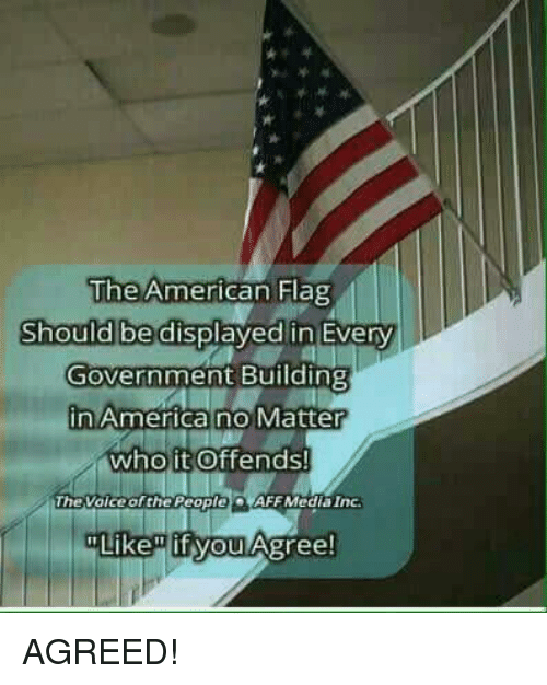 "America, Memes, and American: The American Hag  Should be displayed in Every  Government Building  in America no Matter  who it Offends!  TheVoice of the People)。(AFF Media Inc.  Like"" if you Agree! AGREED!"