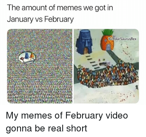 Memes, Video, and 🤖: The amount of memes we got in  January vs February  G:PolarSaurusRex  na  n0 My memes of February video gonna be real short