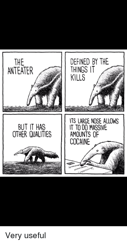 Cocaine, Anteater, and Defined: THE  ANTEATER  DEFINED BY THE  THINGS IT  KILLS  TS LARGE NOSE ALLOWS  IT TO DO MASSIVE  BUT IT HAS  OTHER QUALITIES AMOUNTS OF  COCAINE Very useful